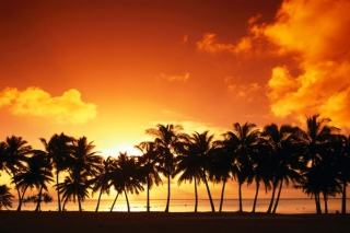 Tropical Sunset sfondi gratuiti per cellulari Android, iPhone, iPad e desktop