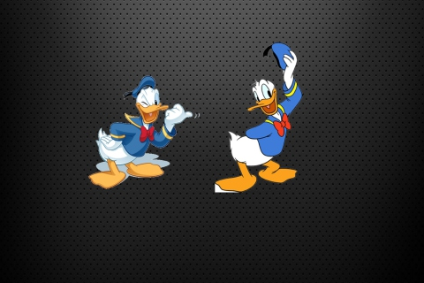 Donald Duck para Sony Ericsson XPERIA X10 mini pro