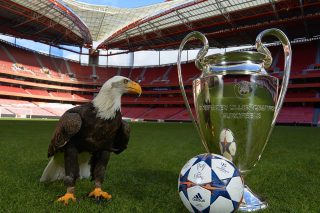 Estadio da Luz with UEFA Euro Cup Wallpaper for 1400x1050