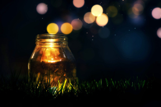 Glass jar in night Background for Android, iPhone and iPad