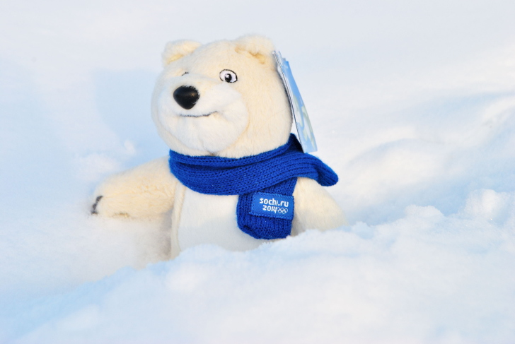 Screenshot №1 pro téma Winter Olympics Teddy Bear Sochi 2014