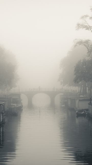 Misty Autumn In Amsterdam