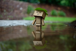 Danbo And Autumn Picture for Android, iPhone and iPad