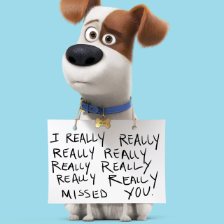 Max from The Secret Life of Pets sfondi gratuiti per iPad Air