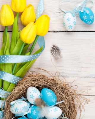 Easter Spring Tulips Background for 176x220