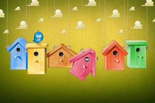 Blue Bird Picture for Android, iPhone and iPad