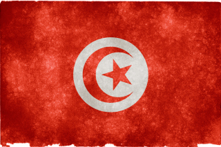 Tunisia Flag Wallpaper for HTC EVO 4G