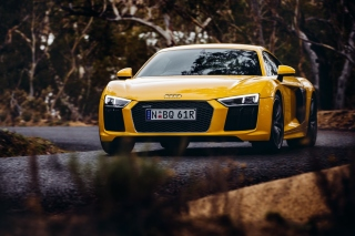 Free Audi R8 V10 Plus Yellow Body Color Picture for Android, iPhone and iPad