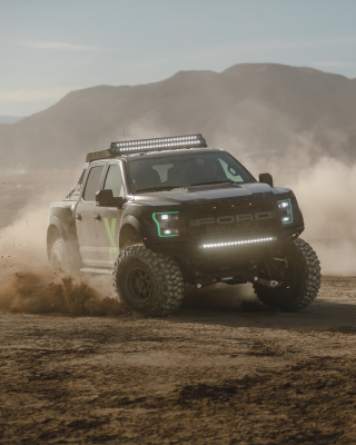 Free Ford F150 Raptor Picture for 640x1136