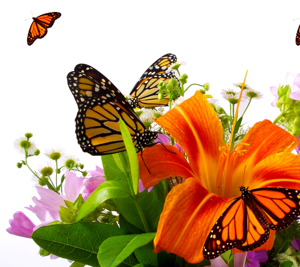 Screenshot №1 pro téma Lilies and orange butterflies 960x854