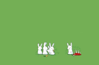 Carnivorous Rabbit Background for Android, iPhone and iPad