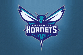 Charlotte Hornets Picture for Android, iPhone and iPad