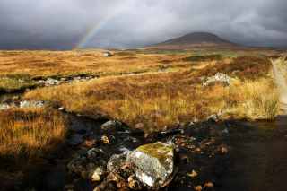 Rannoch Moor Wallpaper for Android, iPhone and iPad