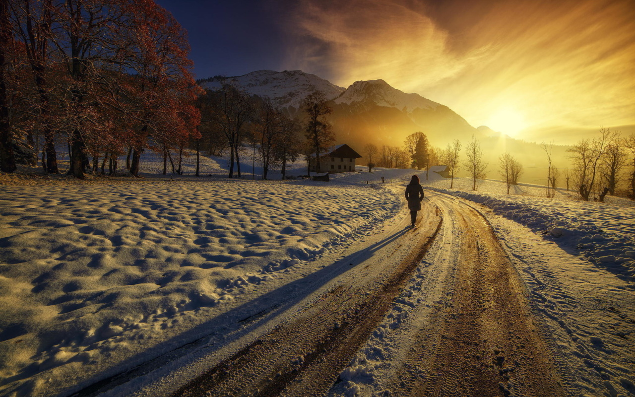 Winter Sunrise wallpaper 1280x800