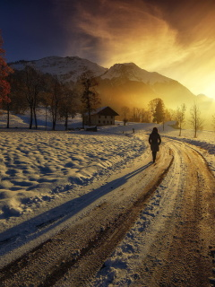 Winter Sunrise wallpaper 240x320