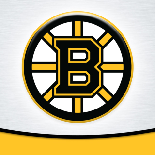 Boston Bruins Team Logo papel de parede para celular para iPad 3