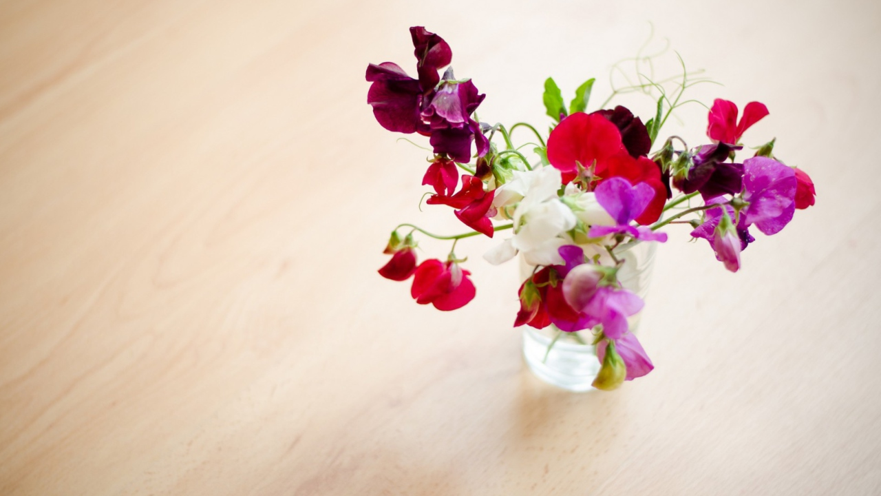 Bright Flowers On Table