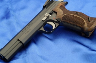 Free Sig P210 Pistole 49 Picture for Android, iPhone and iPad