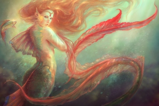 Mermaid Painting Background for Android, iPhone and iPad