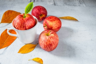 Free Autumn apples Picture for 1200x1024