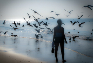 Free Girl And Seagulls Picture for Android, iPhone and iPad
