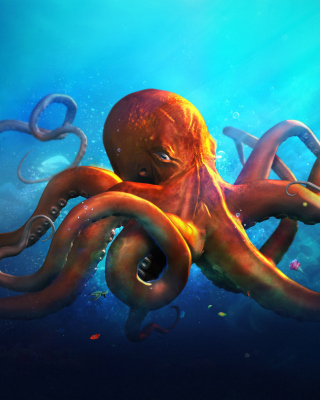 Free Octopus HD Picture for Nokia C1-01