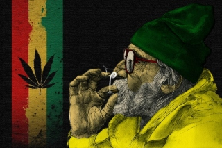 Rastafari and Smoke Weeds Wallpaper for 220x176