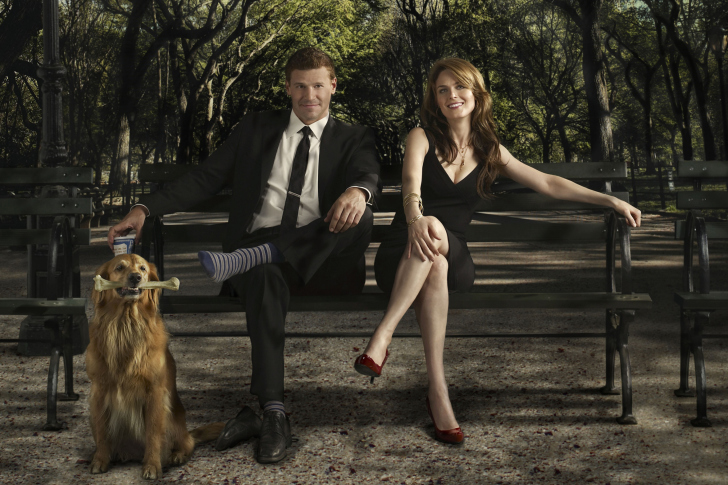 Bones Television Film wallpaper