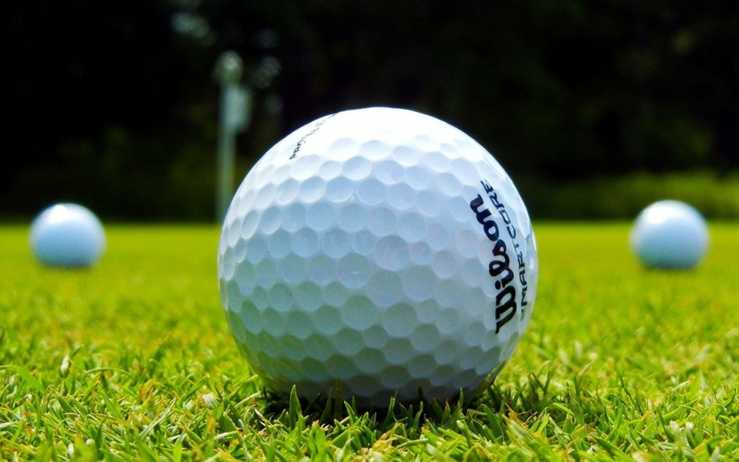 Fondo de pantalla Golf Ball 2560x1600
