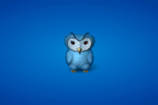 Blue Owl Background for Android, iPhone and iPad