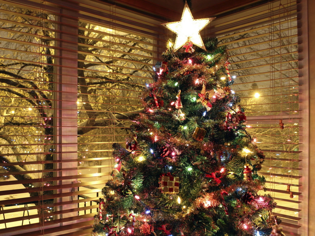 Screenshot №1 pro téma Christmas Tree With Star On Top 1024x768