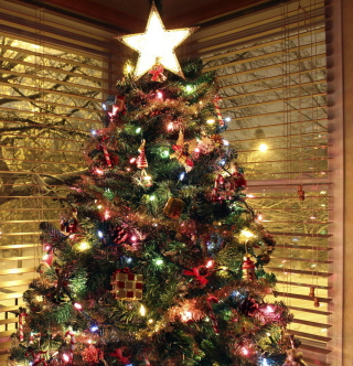 Christmas Tree With Star On Top - Obrázkek zdarma pro iPad