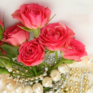 Necklace and Roses Bouquet Background for LG KP105