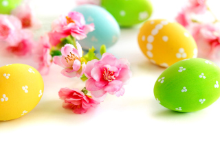 Easter Eggs and Spring Flowers - Fondos de pantalla gratis