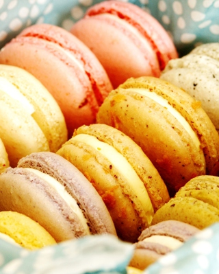 Free Macarons Picture for iPhone 5S