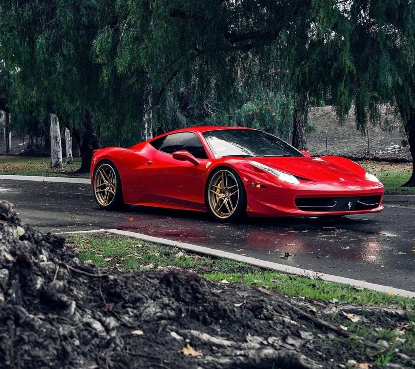 Обои Ferrari Enzo after Rain 1440x1280