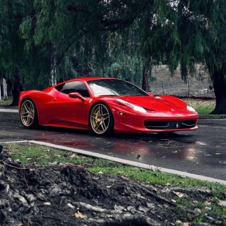 Ferrari Enzo after Rain Picture for iPad mini 2