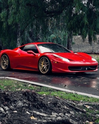Ferrari Enzo after Rain Picture for iPhone 6 Plus