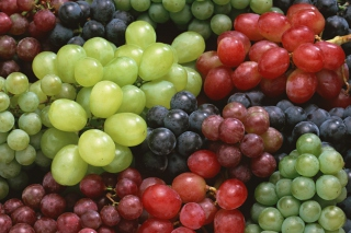 Free Colorful Grapes Picture for Android, iPhone and iPad