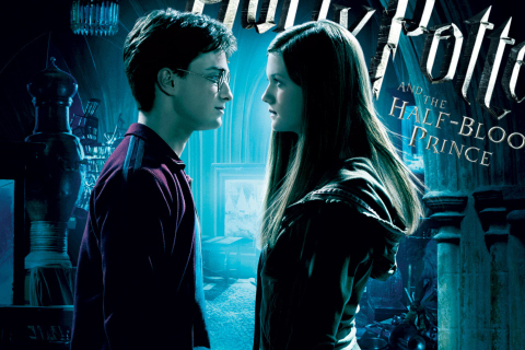 Screenshot №1 pro téma Harry Potter 480x320