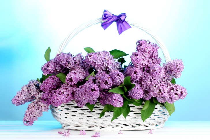Sfondi Baskets with lilac flowers
