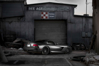 Kostenloses Black Dodge Viper Wallpaper für Samsung I9080 Galaxy Grand
