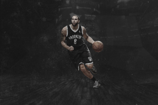 Brooklyn Nets, Deron Williams - Obrázkek zdarma pro Widescreen Desktop PC 1600x900