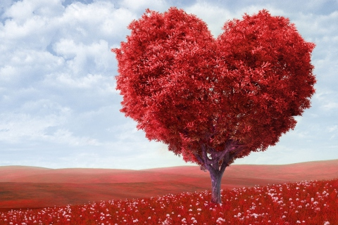 Heart Tree para Samsung S5367 Galaxy Y TV