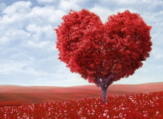 Free Heart Tree Picture for Android, iPhone and iPad