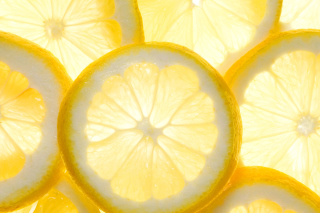 Lemon Slice Wallpaper for Android, iPhone and iPad