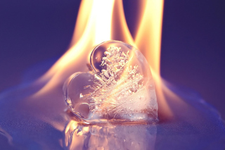 Free Ice heart in fire Picture for Android, iPhone and iPad