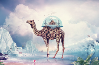 Magical Camel Wallpaper for Android, iPhone and iPad