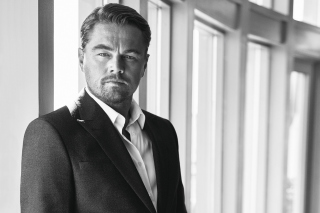 Leonardo DiCaprio Celebuzz Photo Wallpaper for 960x854