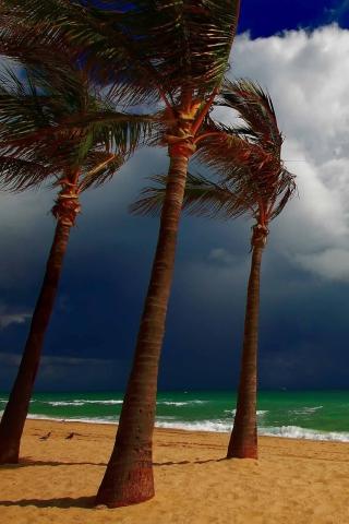 Beach Ani Villas, Anguilla para Huawei G7300